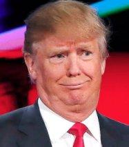 Stupid trump