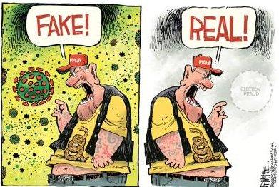 Fake real
